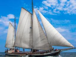 2 Mast Klipper Alida Steuerbordansicht unter Segel