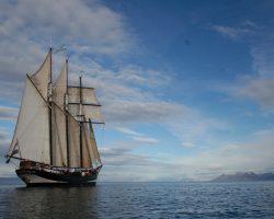 Segelurlaub: Atlantik OOSTERSCHELDE 2019 Beitragsbild zeigt den Traditionssegler von achtern