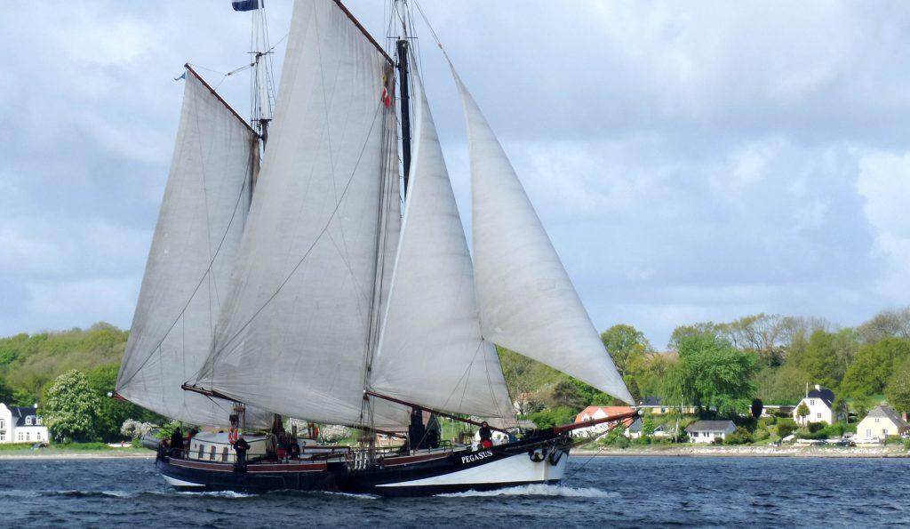 Segelurlaub Europa PEGASUS Produktbild zeigt den 2 Mast Klipper Pegasus Steuerbordansicht unter Segel
