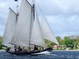 Segeln dem größten Sommerfest des Nordens zeigt das Segelschiff Pegasus