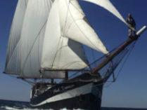 Hamburger Hafengeburtstag Abel Tasman zeigt das Schiff von vorne