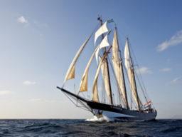 Mitsegeln Europa auf der Oosterschelde Beitragsbild zeigt das Schiff segelnd