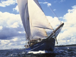 Mitsegeln Europa auf der Stortemelk Beitragsbild zeigt das Schiff segelnd