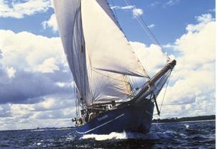 Mitsegeln Hanse Sail 2019