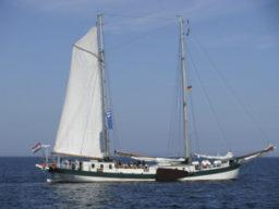Mitsegeln Hafengeburtstag auf der Elegant Beitragsbild zeigt das Schiff segelnd