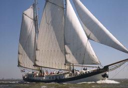 Mitsegeln Hanse Sail Rostock auf der Elegant Beitragsbild zeigt das Schiff segelnd