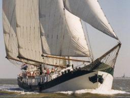 Mitsegeln Kieler Woche auf der Elegant Beitragsbild zeigt das Schiff segelnd