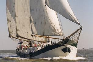 Mitsegeln Kieler Woche zeigt das Schiff Elegant