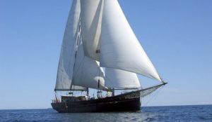 Segelurlaub Europa Ethel von Brixham zeigt das Schiff unter Segeln