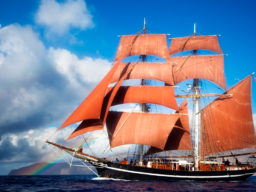 Segelreisen Europa: Eye of the Wind Produktbild zeigt das stolze Schiff mit seinen auffalenden brauenen Segeln