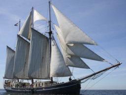 Segelstunden Kieler Woche zeigt den 3 Mast Schoner ALBERT JOHANNES