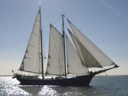Rad und Schiff Zephyr Bild zeigt den Schoner