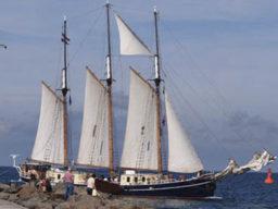 Kurztörn Christi Himmelfahrt zeigt das Segelschiff Albert Johannes