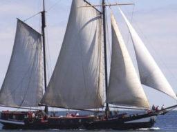 Wohlfühltoern Frans Horjus zeigt das segelnde Schiff