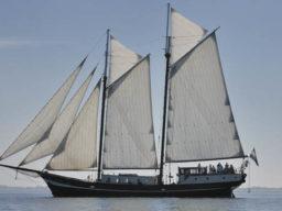 Hanse Sail in Rostock zeigt die Abel Tasman