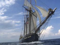 Segelreisen Helgoland zeigt einen Traditionssegler