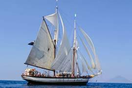 Segeltörns mitsegeln Bild zeigt Traditionsschiff unter vollen Segeln