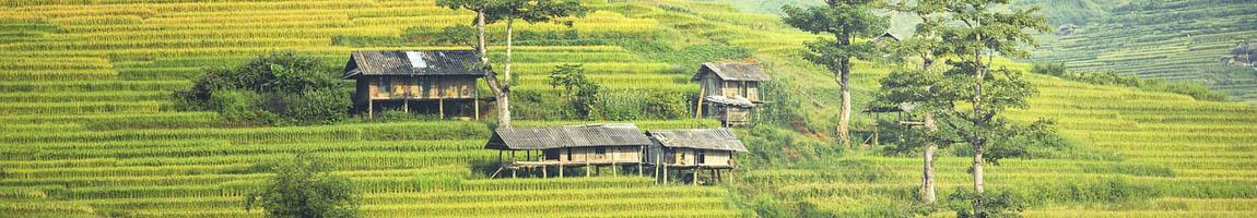 Segeltörn Bali BIld zeigt Hütten in grünen Hügeln