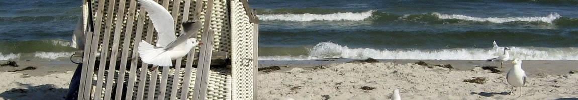 Segeltörn Deutschland Bild zeigt einen Strandkorb und Möven