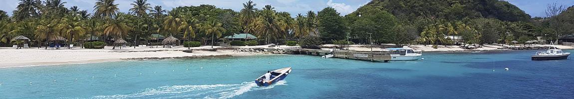 Segeltörn Grenadinen Bild zeigt Tropenstrand