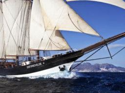 Segelreise La Semaine du Golfe auf der Oosterschelde