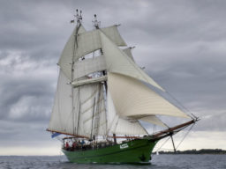 Meilenmacher Avatar zeigt das Segelschiff