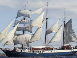 Meilentoerns Barkentine ATLANTIS zeigt das Segelschiff
