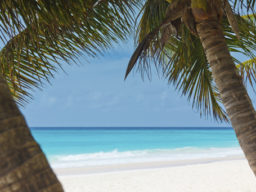 Segelkreuzfahrt Karibik Sea Cloud zeigt Strandszenerie