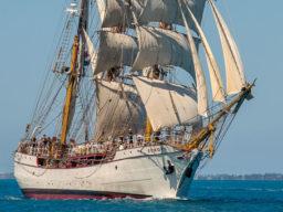 Atlantiktoerns Bark Europa Bild zeift das Schiff unter Segeln