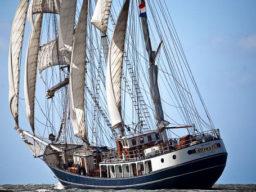 Meilentörn segeln Bild zeigt die Thalassa