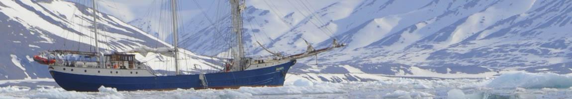 Mitsegeln weltweit zeigt die Antigua vor Eisbergen