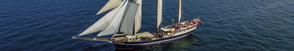Ostseeurlaub - Segeltörn Ostsee Bild zeigt Traditionsschiff segelnd