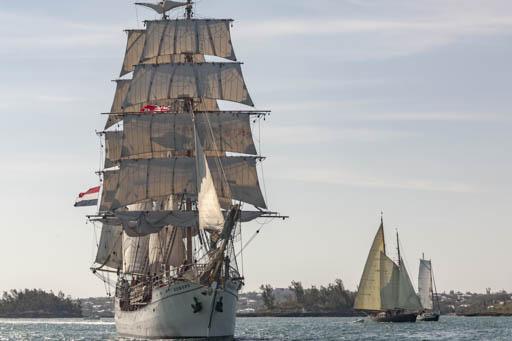 Mitsegeln Tall Ships Races Bild zeigt die Europa