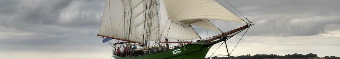Traditionsschiffe und Traditionssegler chartern und mieten zeigt die Avatar