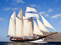 Überfuehrungstoerns Oosterschelde Bild zeigt das stolze Segelschiff