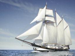 Rad und Schiffsreise zeigt die SWAENSBORGH