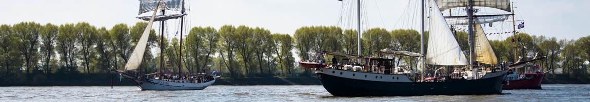 Gruppenreise auf Schiffen zeigt Grosssegler auf der Elbe