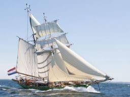 Meilentörns Avatar zeigt das grüne Segelschiff