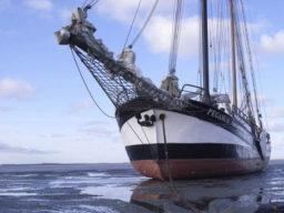 Dänische Südsee Reise zeigt die Pegasus