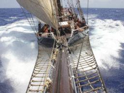 Tall Ships Races mitsegeln