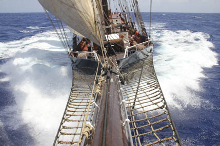Tall Ships Races segeln zeigt die Oosterschelde