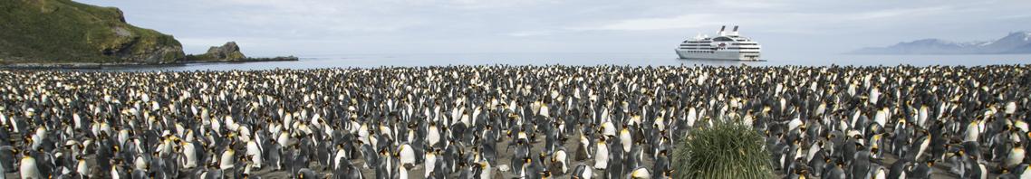 Expeditionskreuzfahrten zeigt Megayacht vor Pinguinen