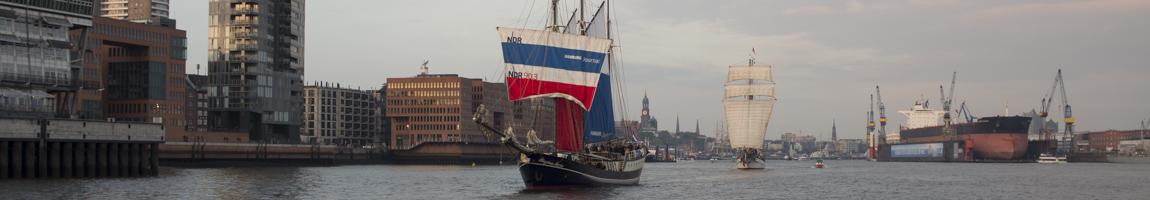 Tagestörn buchen Bild zeigt Schiffe auf dem Hafengeburtstag