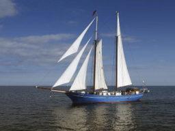 Segelstunden zur Kieler Woche zeigt das Segelschiff Stortemelk