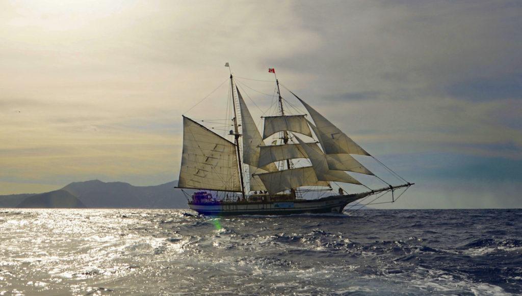 Zeigt Segelschiff Florette unter vollen Segeln