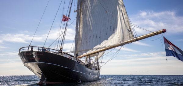 Zeigt das Segelschiff WYLDE SWAN