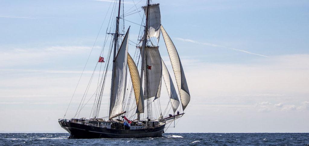Zeigt das Schiff Wylde Swan