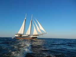 Hanse Sail Rostock: Abel Tasman zeigt den2 Mast Gaffelschoner unter Segeln