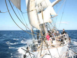 Meilentörns: CHRISTIAN RADICH Produktbild zeigt das Vollschiff in Aktion.