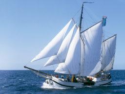 Segelreisen Europa Jan Huygen zeigt die Koftjalk segelnd
